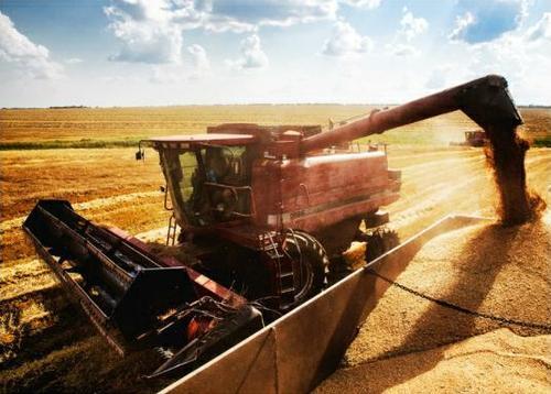 乌克兰成为世界第二大粮食出口国