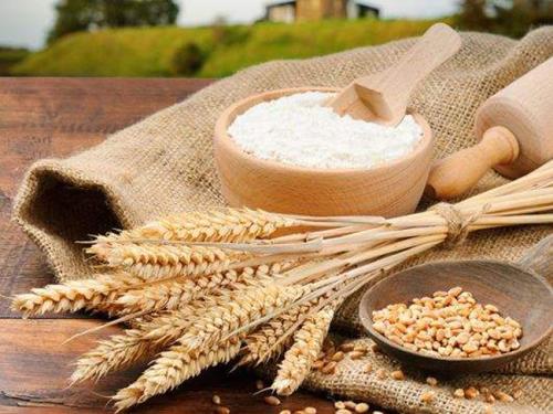 乌克兰成为世界第二大谷物出口国