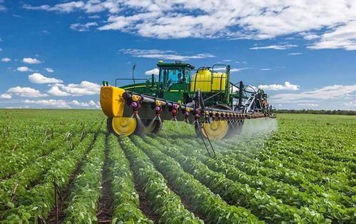 专家预测乌克兰今年谷物收成将增长13%
