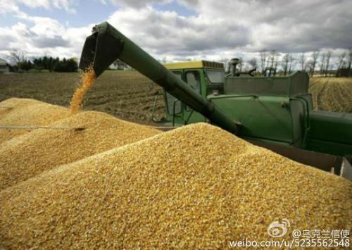 乌克兰已出口谷物逾千万吨
