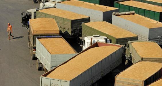 乌克兰小麦出口增加