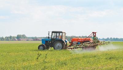 乌克兰今年将启动网上竞拍国有土地出租试点