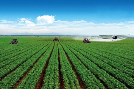 乌克兰从2019年1月1日起实行新的农用地使用法规